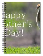 Sandhill Chick Mother's Day Card Spiral Notebook