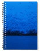 Sandhill Crane Blue Hour Spiral Notebook
