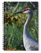 Sandhill Crane Profile Spiral Notebook