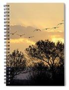 Sandhill Cranes Flying At Sunset Spiral Notebook