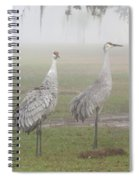 Sandhill Cranes In A Foggy Morning Spiral Notebook