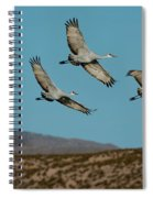 Sandhill Cranes Over Chupadera Mountains Spiral Notebook