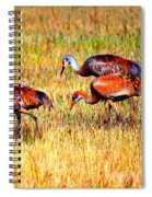 Sandhill Family Spiral Notebook