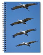 Sandhill In Fromation Spiral Notebook