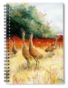 Sandhill Serenade Spiral Notebook