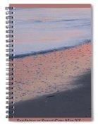 Sandpiper At Sunset Print Spiral Notebook