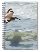 Sandpiper Flight Spiral Notebook