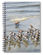 Sandpiper Reflections Spiral Notebook