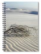 Sands Of Time Brazil Spiral Notebook