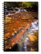 Sandstone Cascade Spiral Notebook