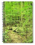 Sandstone Glade Of Shades Mountain Spiral Notebook