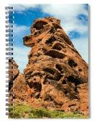 Sandstone Husky Spiral Notebook