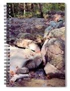 Sandstone Spiral Notebook