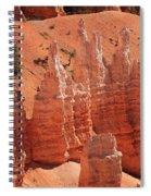 Sandstone Pillars Spiral Notebook