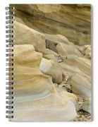 Sandstone Sediment Smoothed And Rounded By Water Spiral Notebook