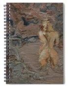 Sandy Pool. Spiral Notebook