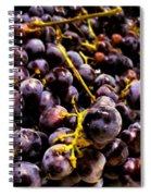 Sangiovese Grapes Spiral Notebook