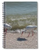 Sanibel Ibis Spiral Notebook