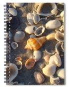 Sanibel Island Shells 2 Spiral Notebook