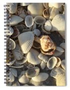 Sanibel Island Shells 3 Spiral Notebook
