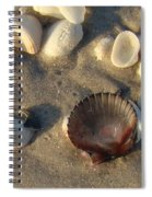 Sanibel Island Shells 5 Spiral Notebook