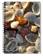 Sanibel Island Shells 6 Spiral Notebook