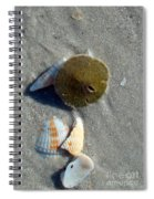Sanibel Sand Dollar 1 Spiral Notebook