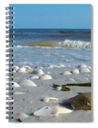 Sanibel Sand Dollar 2 Spiral Notebook