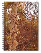 Santa Ana Winds In Southern California Spiral Notebook