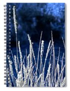Santa Fe Grass 1 Spiral Notebook