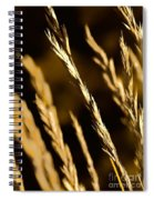 Santa Fe Grass 2 Spiral Notebook