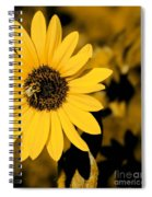 Santa Fe Sunflower 1 Spiral Notebook