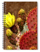 Santa Rita Cactus Spiral Notebook