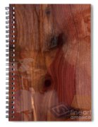 Santa Rw Cedar Toy Chest Spiral Notebook