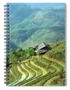 Sapa Rice Fields Spiral Notebook