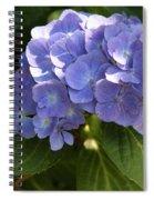 Sapphire Dream Spiral Notebook