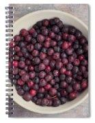 Saskatoon Berries Spiral Notebook