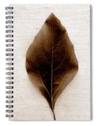 Sassafras Leaves In Sepia Spiral Notebook