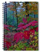 Sassafras Tea Anyone Spiral Notebook