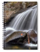 Sassy Waters Spiral Notebook