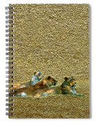 Savannah Queens Spiral Notebook