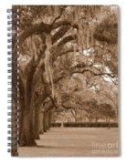 Savannah Sepia - Emmet Park Spiral Notebook