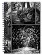 Savannah Shadows Collage Spiral Notebook
