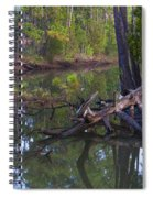 Save The Marsh Spiral Notebook
