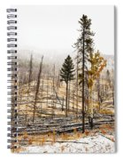 Sawback Burn, On Bow Valley Parkway Spiral Notebook