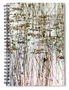 Sawgrass Swamp Panorama Spiral Notebook