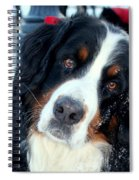 You Said You Love Me Spiral Notebook
