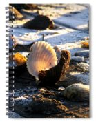 Half Shell On Ice Spiral Notebook