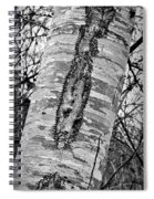 Scabs N Scars Spiral Notebook