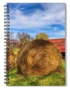 Scarecrow's Dream Spiral Notebook